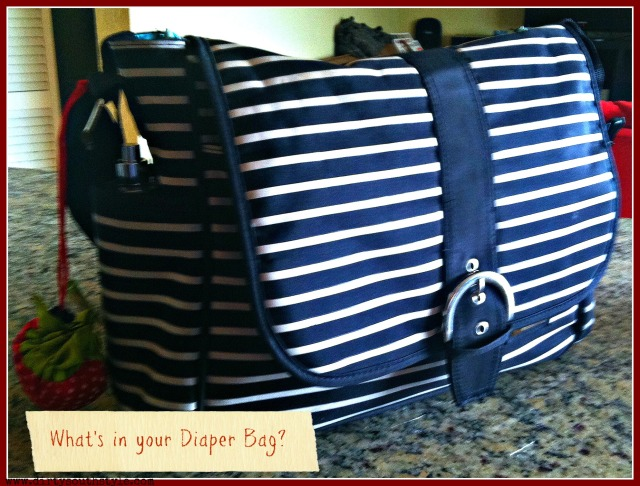 My Bag: Liz Lange Baby for Target