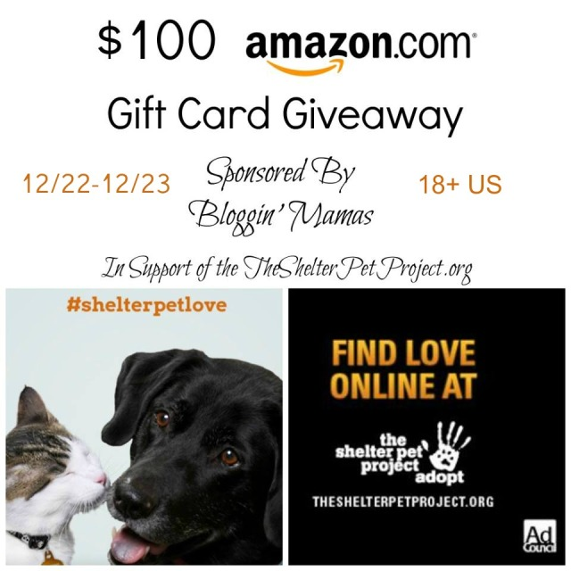 shelter pet giveaway image with dates